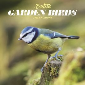 Carousel British Garden Birds Mini Kalender 2020
