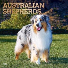 Browntrout Australische Herder - Australian Shepherd Kalender 2020