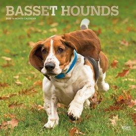 Browntrout Basset Hound Kalender 2020