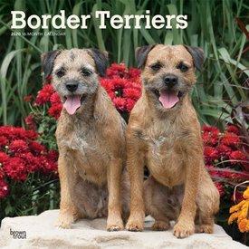 Browntrout Border Terrier Kalender 2020
