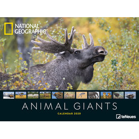 teNeues Animal Giants NG Posterkalender 2020