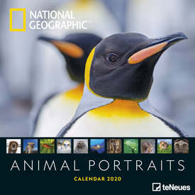 teNeues Animal Portraits NG Kalender 2020