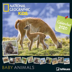 teNeues Baby Animals NG Kids Kalender 2020