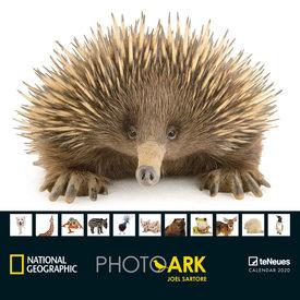 teNeues Photo Ark NG Kalender 2020