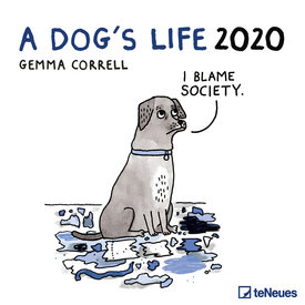 teNeues A Dog's Life Kalender 2020