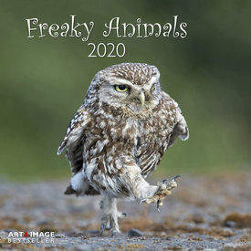 teNeues Freaky Animals Kalender 2020