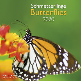 teNeues Vlinders - Butterflies Kalender 2020