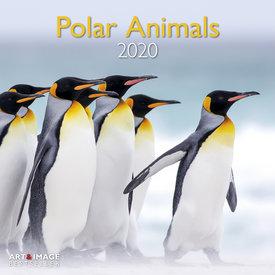 teNeues Polare Tiere - Polar Animals Kalender 2020