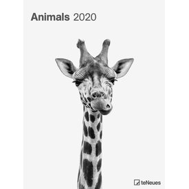 teNeues Animals Posterkalender 2020