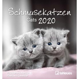 teNeues Schmusekatzen Postkartenkalender 2020