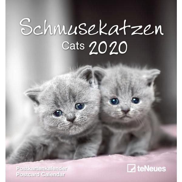 teNeues Katten Postcard Kalender 2020