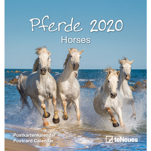 teNeues Pferde Postkartenkalender 2020