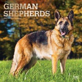 Browntrout Duitse Herder Kalender 2020