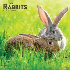 Browntrout Kaninchen Kalender 2020