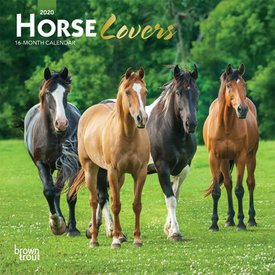 Browntrout Horse Lovers Mini Kalender 2020