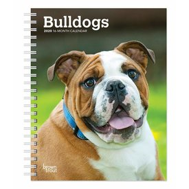 Browntrout Engelse Bulldog Agenda 2020