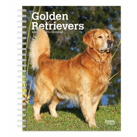 Browntrout Golden Retriever Agenda 2020
