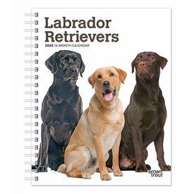 Browntrout Labrador Retriever Agenda 2020