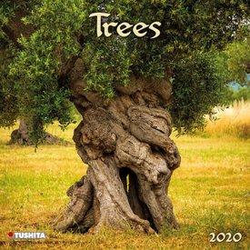 Tushita Bomen - Trees Kalender 2020