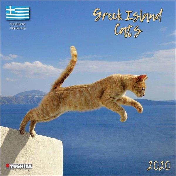 Tushita Greek Island Cats Kalender 2020