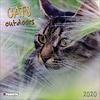 Katzen - Cats Outdoors Kalender 2020
