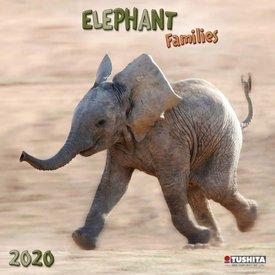 Tushita Olifanten Kalender 2020