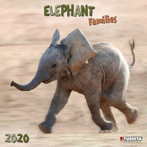 Elefanten Familien Kalender 2020