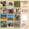 Elefanten Familien - Elephant Families Kalender 2020