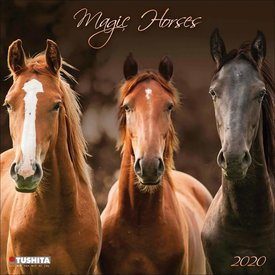 Tushita Magie der Pferde Kalender 2020