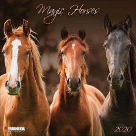 Tushita Paarden - Magic Horses Kalender 2020