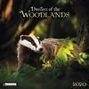 Woodlands - Bewohner des Waldes Kalender 2020
