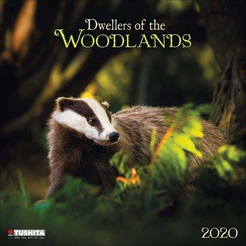 Bewohner des Waldes Kalender 2020