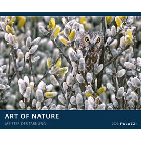 Palazzi Art of Nature Posterkalender 2020