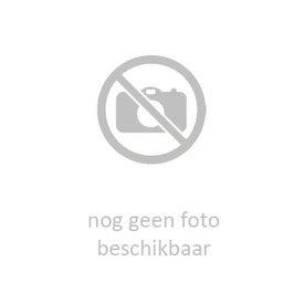 teNeues FC Bayern München 21x30 Kalender 2020