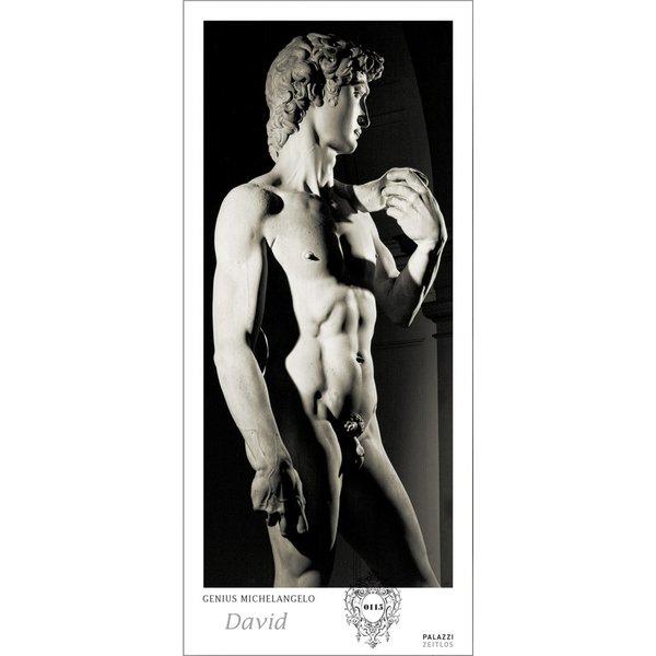 Palazzi Genius Michelangelo: David By Aurelio Amendola Tijdloze Posterkalender