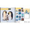 Pinguin - Penguins Kalender 2020