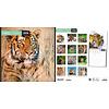 Tijger - Tigers Kalender 2020