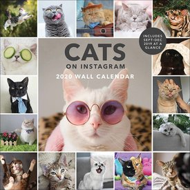 Chronicle Books Cats on Instagram Kalender 2020