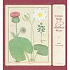 Elegant Herbs & Medicinal Plants Kalender 2020
