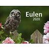Eulen 2020 Kalender