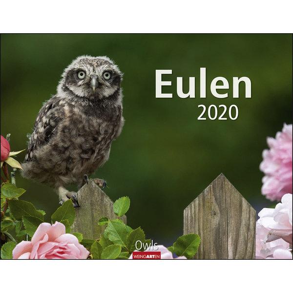 Weingarten Eulen 2020 Kalender
