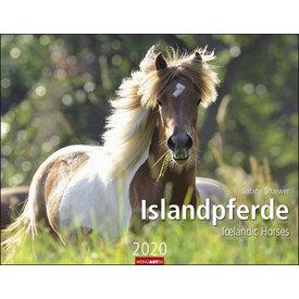 Weingarten De Paarden van IJsland Kalender 2020