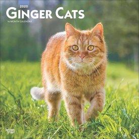 Browntrout Rode Katten Kalender 2020