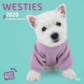 Studio Pets By Myrna West Highland White Terrier Kalender 2020