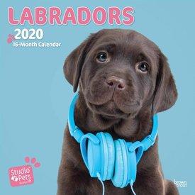 Studio Pets By Myrna Labrador Retriever Kalender 2020