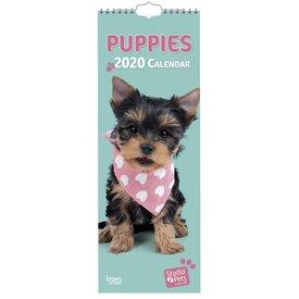 Studio Pets By Myrna Puppies Studio Pets Slimline Kalender 2020