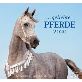 Dumont Paarden - Beloved Horses Kalender 2020