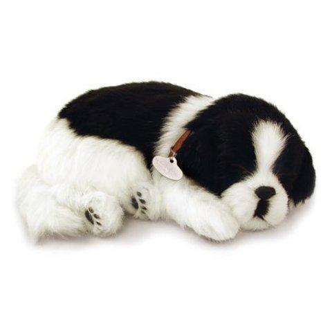 Perfect Petzzz Border Collie Puppy