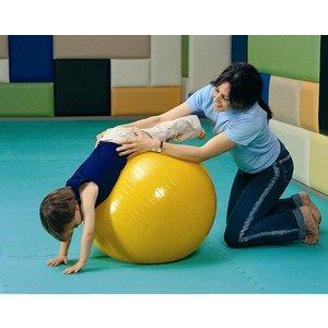 Weplay Gym Bal Anti Burst  ( 65 cm)