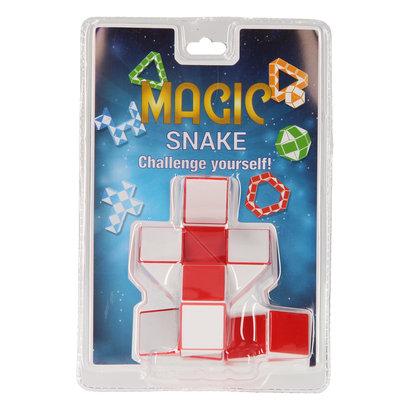 Magische slang